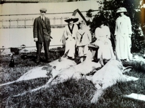 Small-toothed Sawfish, Sewall's Point, 1916. Reported 18-28 feet, they  were once common in the Indian River Lagoon. (Photo courtesy of Sandra Thurlow's archives and the Historical Society of Martin County.)
