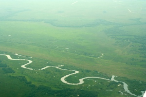Aerial photo of positron of restored Kissimmee River. Note discolored filled in C-38 canal juxtaposed to winding restored oxbows. (Photo Jacqui Thurlow-Lippisch, 2014).