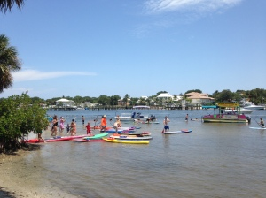 hundreds of children and adults paddle boarded thanks to Costal Padleboarding at PADDLEFEST 2014, many for the very first time.