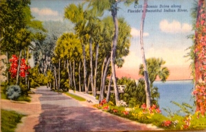 Antique post card of Indian River Drive. (Courtesy of Sandra Henderson Thurlow, ca. 1940s)