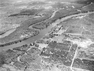 The South Fork of the St Lucie River prior to the construction of the C-44 canal. (Photo ca. 1920,  courtesy archives of Sandra Henderson Thurlow.)