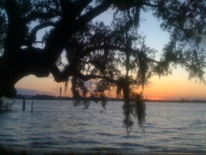 Sunset photo, oak hammock, Sewall's Point, 2011. (Photo by Jacqui Thurlow-Lippisch)