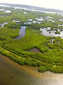 Intricate islands of central Indian River Lagoon near Vero. (Photo Jacqui Thurlow-Lippisch/Ed Lippisch, 2013.)