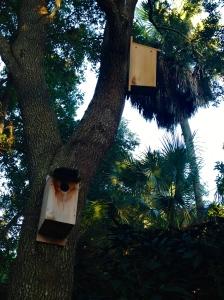 Bird houses for wildlife.