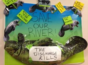 Discharge Kills!
