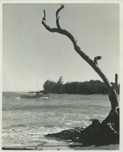 Shoreline...(Whiticar, ca. 1960s)