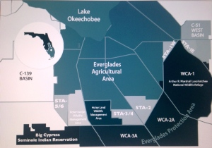 Map of the 6 Storm Water Treatment Areas south of Lake Okeechobee. (Image courtesy of SFWMD, 2014)