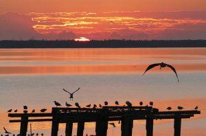 Sunrise, Indian River Drive, 1-21-15, John Whiticar.)