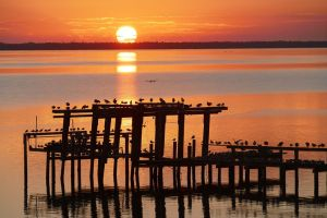 Sunrise along the Indian River Lagoon, by John Whiticar, 2015.