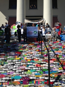 "Katy Lewey of St Lucie River Kidz leads way at the ""Clean Water/Amendment 1 Rally,"" Tallahassee, Florida 2015. (Photo Jacqui Thurlow-Lippisch.)"