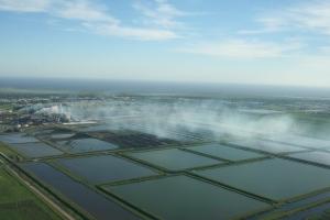 Sugar fields burning near Clewiston. (Photo JTL, 2014.)