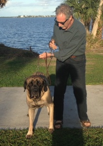 Greg Braunstein walks Oliver at Indian River Side Park, 2015. (Photo Jacqui THurlow-Lippisch.)