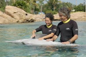 """Natasha """"our"""" dolphin, 2008."""