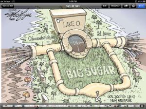 """Cartoon on the giant """"flush,"""" 2013."""