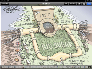 "Cartoon on the giant ""flush,"" 2013."