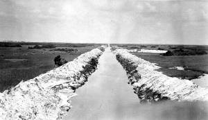 "Canal ca. 1920 pubic photo,  ""west of Ft Lauderdale."""