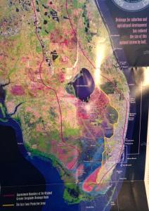 Everglades Historic Map Jacqui Thurlow Lippisch