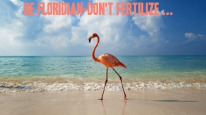 """Be Floridian. Don't Fertilize."" Photo adapted from Beauty of Nature photos sent to me by Anna Marie Wintercorn, 2015. (http://mp.weixin.qq.com/s?__biz=MjM5MjE0NTQ4Mw==&mid=200115697&idx=6&sn=74ffa17c3f3374553c6261be656fbb15&scene=1&from=groupmessage&isappinstalled=0#rd)"