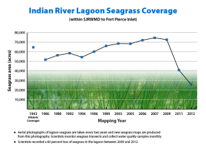 Recent seagrass loss in the central and northern IRL. This came to a head the same time the S IRL was toxic from releases from Lake Okeechobee and area canals. A tipping point...