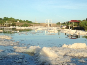 Foam floating on water at C-24 Spillway. (Photo Dr.Dave Carlson, September 9, 2015)