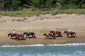 Horseback riding along the beaches of St Lucie County. Cover photo of website, 2015.