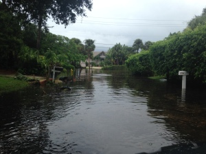 Riverview and South Sewall's Point Road flooded in the Town of Sewall's Point 9-17-15 (JTL)