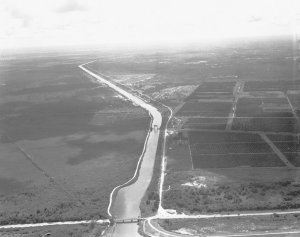 C-44 canal with Coca Coal's Minute Maid Orange Groves, 1963. Photo Arthur Ruhnke courtesy of historian Sandra Henderson Thurlow.