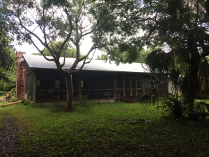 The house built in the early days of Miami by Maggie's mother.