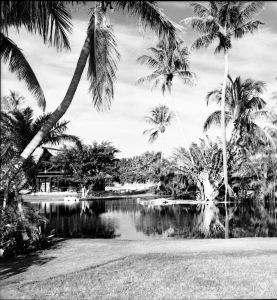 Langford Estate 1961. Aurthur Ruhnke.