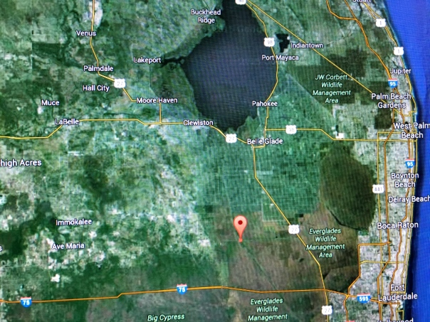 The bigger picture. Lake O used to flow to the Everglades. Google Earth map 2016.