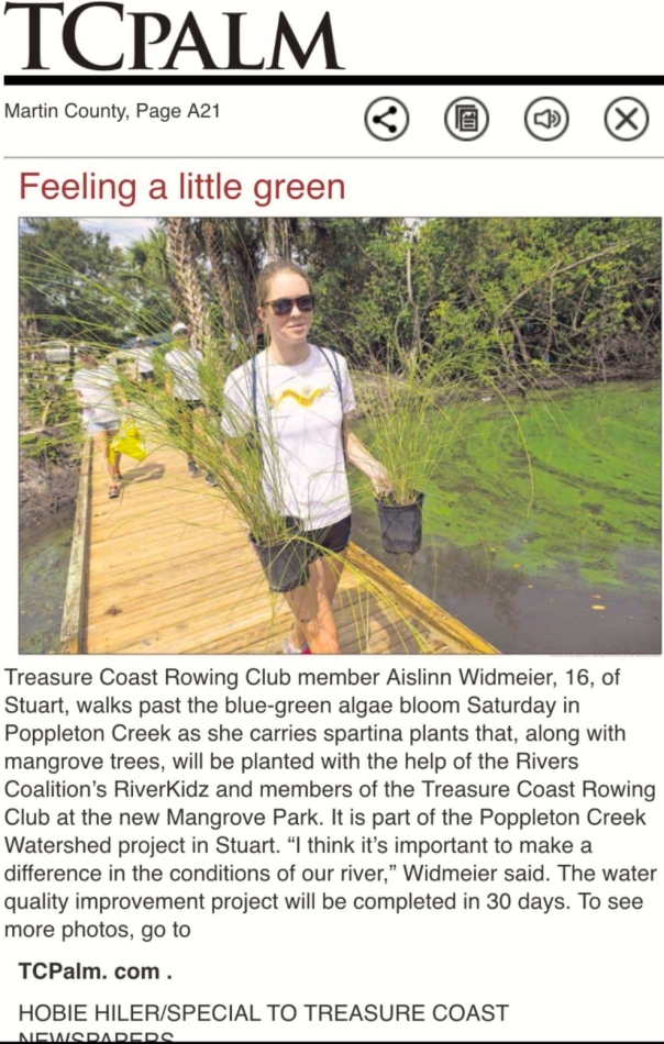 River Kidz and Treasure Coast Rowing Club youth led a river clean up and planting of native vegetation to filter water during incoming and outgoing tides at Poppleton Creek. The creek was filled with an algae bloom. photo TC Palm