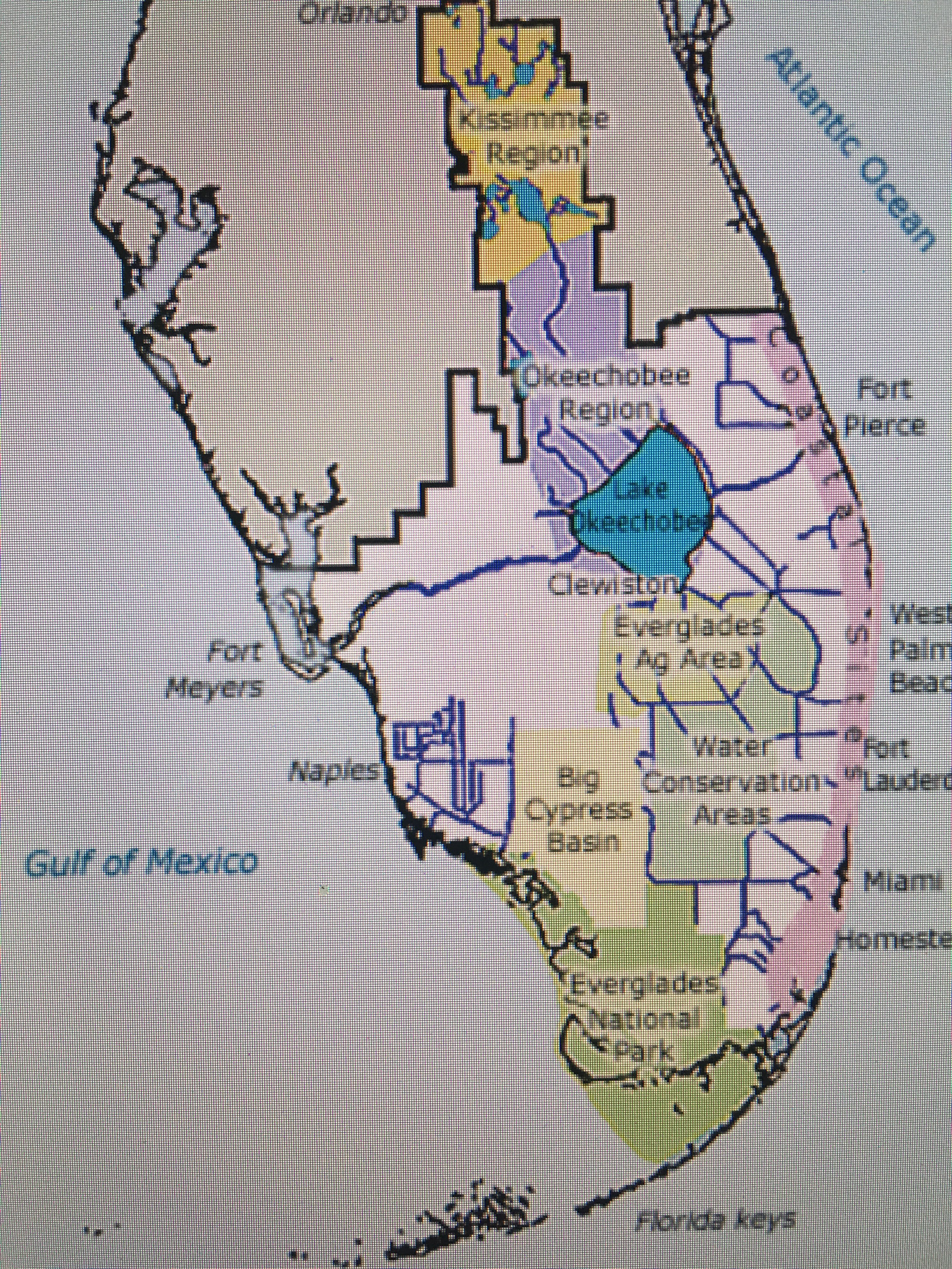 Lake Okeechobee BlueGreen Bacterial Blooms in Florida Lessons From