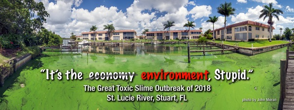 "stuart its the economy stupid 1400 In: John Moran's ""Florida's Summer of Slime: Stuart and Lake Okeechobee"" | Our Santa Fe River, Inc. | Protecting the Santa Fe River in North Florida"