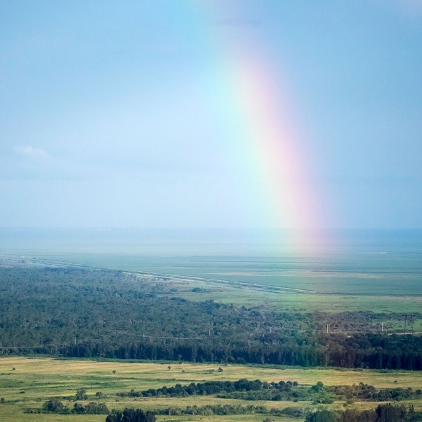"stuart slime tour aerial rainbow square 1000 1288 In: John Moran's ""Florida's Summer of Slime: Stuart and Lake Okeechobee"" | Our Santa Fe River, Inc. | Protecting the Santa Fe River in North Florida"