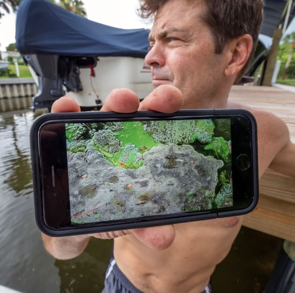 "stuart slime tour cel phone picture 1000 9304 In: John Moran's ""Florida's Summer of Slime: Stuart and Lake Okeechobee"" | Our Santa Fe River, Inc. | Protecting the Santa Fe River in North Florida"
