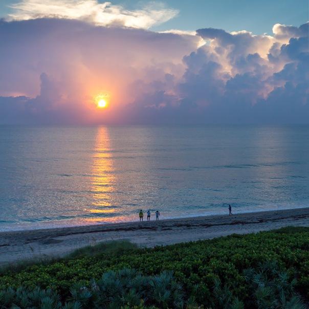 "stuart slime tour hutchinson island sunrise square 1000 9457 In: John Moran's ""Florida's Summer of Slime: Stuart and Lake Okeechobee"" | Our Santa Fe River, Inc. | Protecting the Santa Fe River in North Florida"
