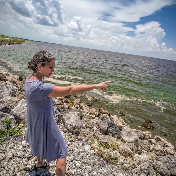 "stuart slime tour jtl at lake o 1000 9082 In: John Moran's ""Florida's Summer of Slime: Stuart and Lake Okeechobee"" | Our Santa Fe River, Inc. | Protecting the Santa Fe River in North Florida"