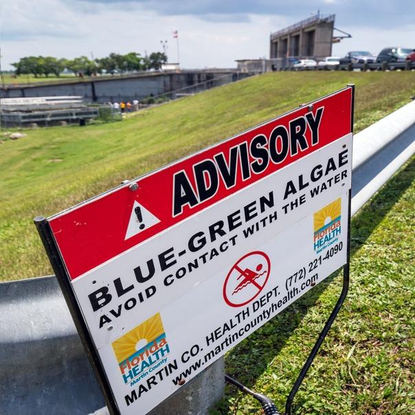 "stuart slime tour lake o warning sign 1000 9121 In: John Moran's ""Florida's Summer of Slime: Stuart and Lake Okeechobee"" | Our Santa Fe River, Inc. | Protecting the Santa Fe River in North Florida"