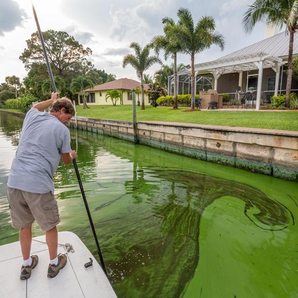 "stuart slime tour mike knepper square 1000 9353 In: John Moran's ""Florida's Summer of Slime: Stuart and Lake Okeechobee"" | Our Santa Fe River, Inc. | Protecting the Santa Fe River in North Florida"