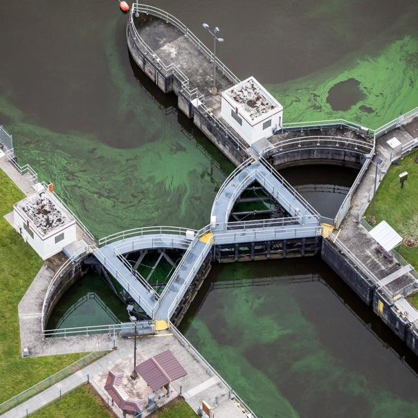"stuart slime tour st lucie lock aerial square 2 1000 1150 In: John Moran's ""Florida's Summer of Slime: Stuart and Lake Okeechobee"" | Our Santa Fe River, Inc. (OSFR) | Protecting the Santa Fe River in North Florida"
