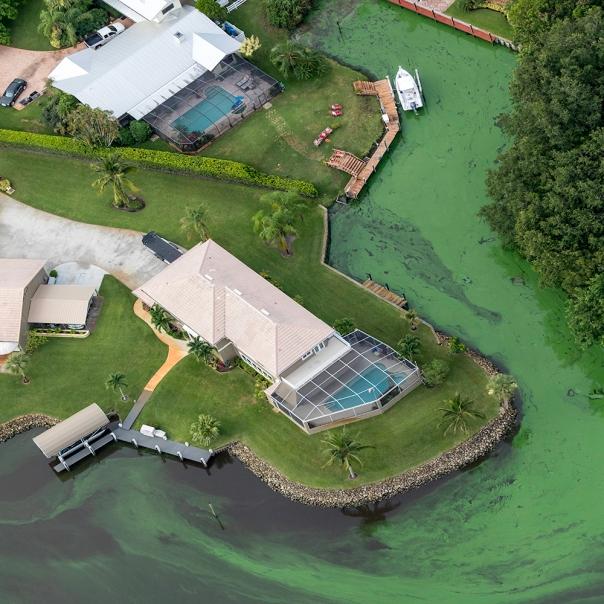 "stuart slime tour stuart slime aerial 1 square 1000 1058 In: John Moran's ""Florida's Summer of Slime: Stuart and Lake Okeechobee"" | Our Santa Fe River, Inc. (OSFR) | Protecting the Santa Fe River in North Florida"