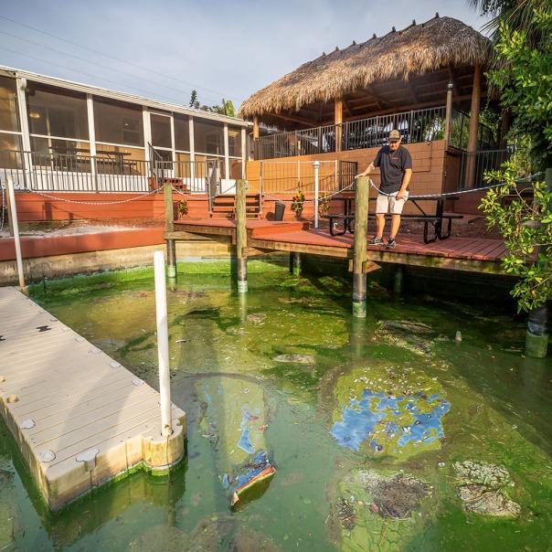 "stuart slime tour tiki house square 1000 9422 In: John Moran's ""Florida's Summer of Slime: Stuart and Lake Okeechobee"" | Our Santa Fe River, Inc. | Protecting the Santa Fe River in North Florida"